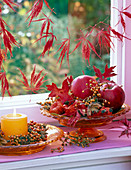 Malus (apple), rose (rosehip), autumn leaves of quercus (oak)