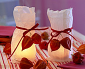 Lanterns decorated in paper sandwish bags with physalis