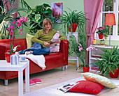 Wohnzimmer mit Phalaenopsis (Malaienblume) auf Tisch und Boden, Howea