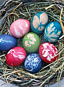 Eggs color with leaves pattern