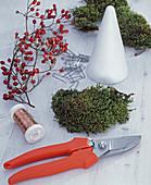 Rosehip cone