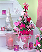 Picea glauca 'Conica' (Canadian spruce) with pink felt hearts