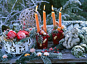 Advent wreath with orange candles, Abies nordmanniana, Citrus