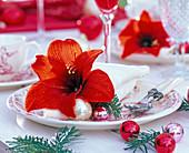 Weihnachtliche Serviettendeko mit roten Hippeastrum (Amaryllis)