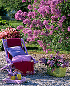 Purple folding chair in front of Syringa (lilac)