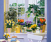 Seasons window in spring
