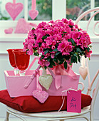 Rhododendron simsii (room azalea) and glasses in wooden basket