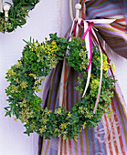 Wreath with oregano (oregano), thymus (thyme), petroselinum
