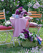 Syringa (lilac) in pink vase on table, espresso cups, cake