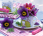 Pulsatilla in small cup and on the table, napkin