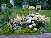 White bed with astilbe, hydrangea