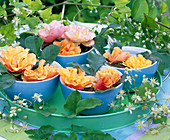 Rose flowers in bowl on tray, clematis tendril