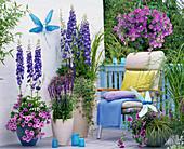 Blue balcony with delphinium (larkspur), petunia