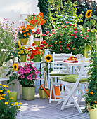 Colorful sowing balcony