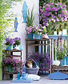 Maritime Balcony with Petunia Dreams 'Sky Blue' Calimero 'Pink Vein'