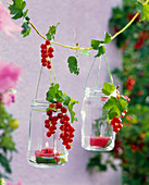 Lantern with Ribes (Currants) hanging on string