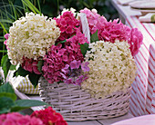 Hydrangea (hydrangea) bouquet in white and pink in basket