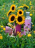 Bouquet from Helianthus annuus on blackboard in the meadow