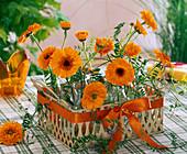 Arrangement of Calendula and Vicia in a flat basket