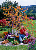 Young woman on white metal bench in front of malus in autumn color
