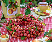 Wreath made of malus (ornamental apple), cup with tea, tin