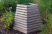Compost container made of boards, Anthemis tinctoria (dyer's chamomile)