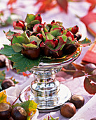 Hollowed chestnuts as a mini vase