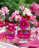 Cosmos (Schmuckkörbchen) in Vasen aus Glas mit Schildern 'Sommer', 'süße Wärme'