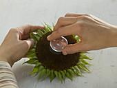 Sunflower blossoms as a tealight holder