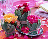 Roses in vase with leaves cover