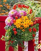 Grüner Henkelkorb mit Chrysanthemum (Herbstchrysanthemen)