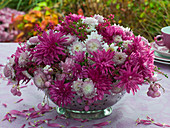 Arrangement of pink autumn chrysanthemums in a colander