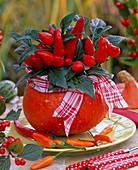 Capsicum (ornamental paprika) in hollowed out cucurbita (pumpkin)