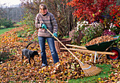 Young woman levels leaves with leaf rake