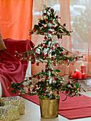 Tied Christmas tree with Ilex, Juniperus