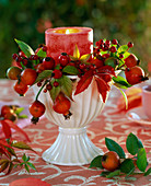 Rosehip, autumn Parthenocissus leaves in mug with candle