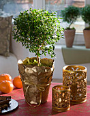 Planter with gilded leaves