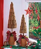 Small trees with cinnamon sticks