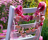 Pink (rose), petals and flowers threaded to the back of the chair