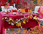 Table decoration with garland of autumn Liquidambar leaves