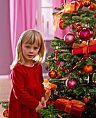 Mädchen vor Abies nordmanniana (Nordmanntanne) als Weihnachtsbaum