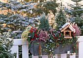 Wintery balcony box with bird food house