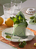 Napkin decoration with Melissa in green-white napkin