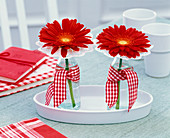 Gerbera with corkscrew cuffs in small bottles with checkered bow