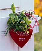 Bouquet of Salvia, Rosemary, Origanum
