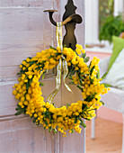 Acacia dealbata (mimosa) wreath on doorknob