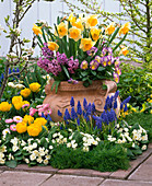 Spring terrace bed in spring