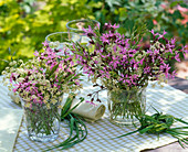 Meadow bouquets from Lychnis, Anthriscus
