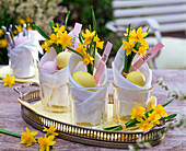 Narcissus (narcissus) in beakers with napkins, easter eggs
