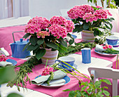 Table decoration with Hydrangea 'Tivoli', braid made of grasses